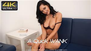 wankitnow-18-02-09-bonnie-a-quick-wank.jpg