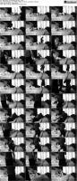 64792977_striplvgirls-ravenanddiagrainybig-2-s_pr.jpg