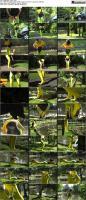 65703091_lightfetish-bonus-2-s_pr.jpg
