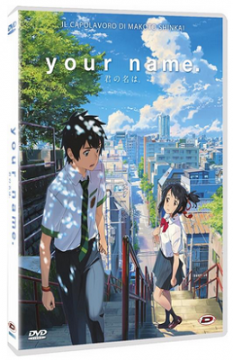Your Name (2016) DVD9